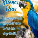 Frases de Buenos Dias: Imagenes bonitas