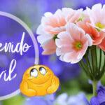 Frases de Bienvenido Abril con imagenes lindas
